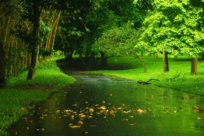 梅雨と雨季の違い
